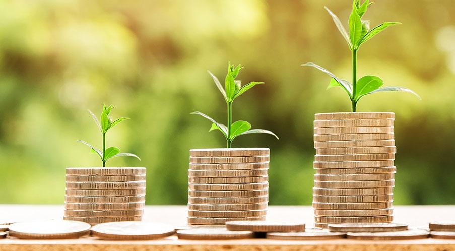 Kapitalförvaltning – På flera nivåer